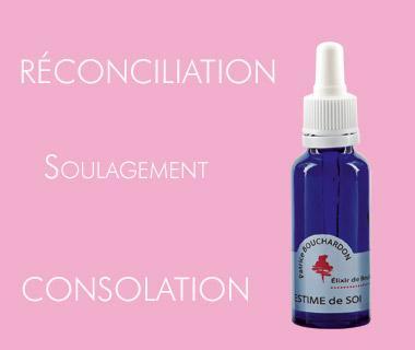 Elixir de Bouleau / ESTIME DE SOI